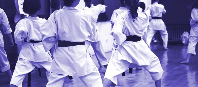 Tallahassee-Karate-School-Sidebar